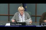 Bloomington City Council 3/1