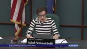 Bloomington City Council 5/30